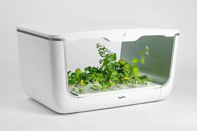 Садовая ферма VegeBox с растениями