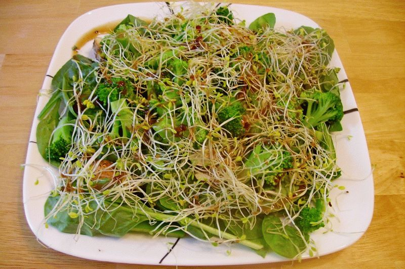 салат из проросшей пшеницы рецепт с фото бейнелерді? ар?асында
